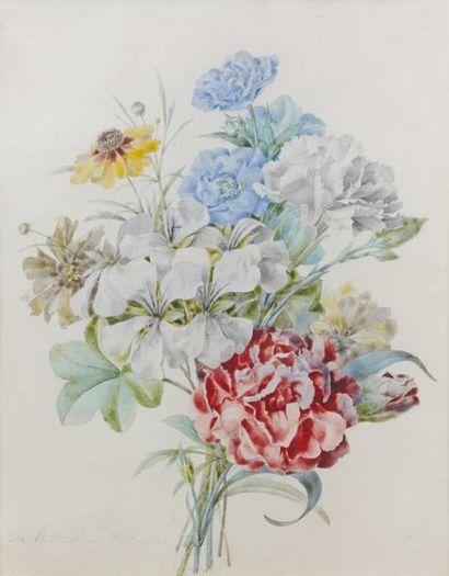 Olympe ARSON (Paris 1814- ?)