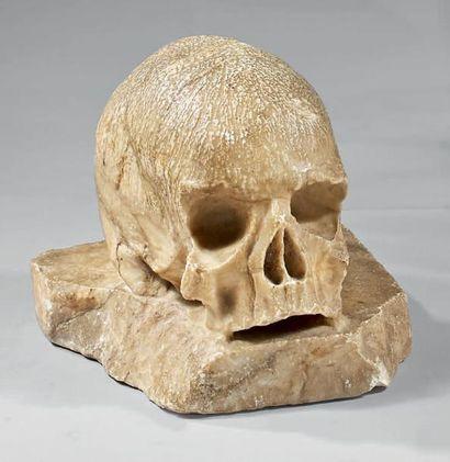 Vanité en albâtre représentant un crâne sur...