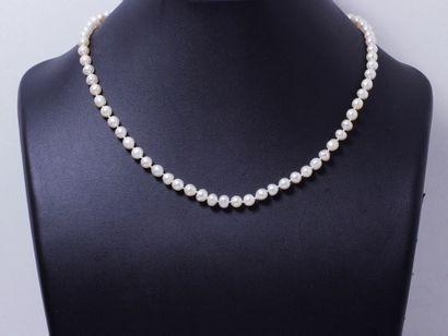 Collier composé d'un rang de 75 perles fines...