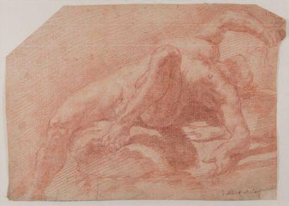 Alberto MELIER, (Actif au début du XIXème siècle)