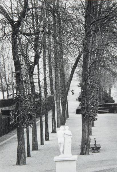 Parc de Saint-Cloud, 1981 Tirage gélatino-argentique...