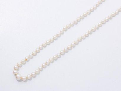 Collier composé d'une chute de perles de...