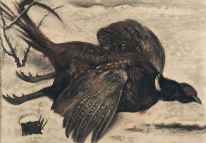 Georges DORIGNAC (1879-1925) Faisan dans la neige Pastel, signé en bas vers la gauche...