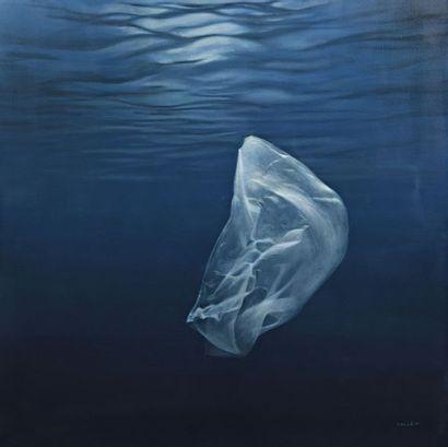 Didier VALLÉ (Né en 1974) Plastic kills,...