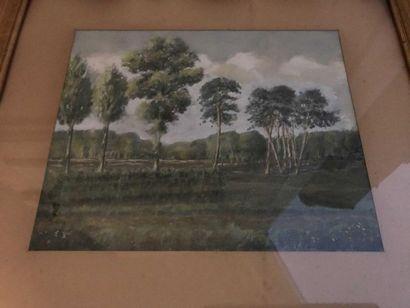 Ecole début du XXè siècle  Paysage aux arbres...