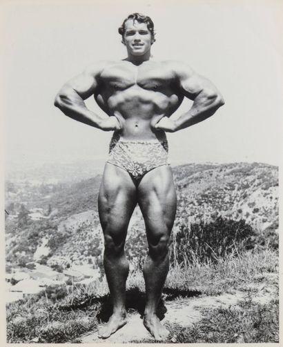 22 Stephen DAWNS Arnold Schwarzenegger Tirage...