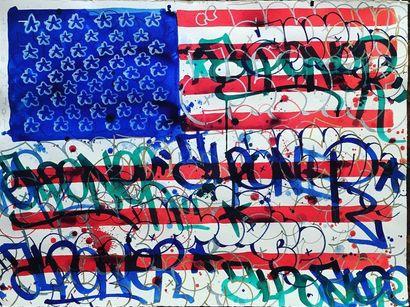 ALPONE NE EN 1970 USALP - 2010 Drapeau US...