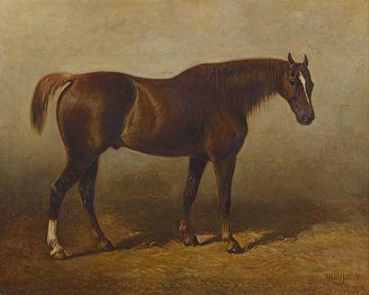 28 Théodore LAFITTE (1818-1875) Cheval à...