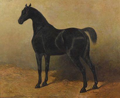 29 Théodore LAFITTE (1818-1875) Cheval à...