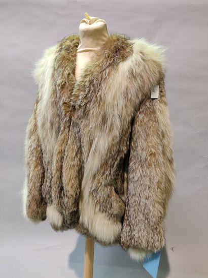 *BOUSSEL  3/4 en Lynx de Mongolie, encolure...