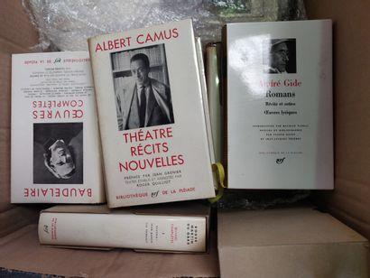 Lot de livres de LA PLEIADE et beaux-arts,...