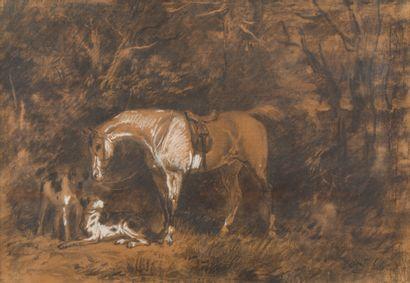 15. Attribué à James WALKER (Calcutta 1831-...