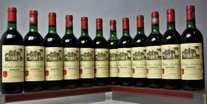 12 bouteilles CHÂTEAU MONTBRUN - Margaux...