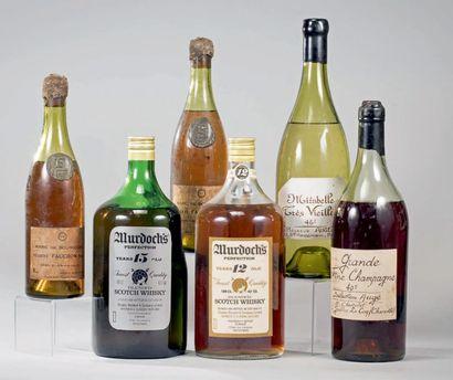 LOT DE 6 FLACONS: 2 bouteilles de Marc de...