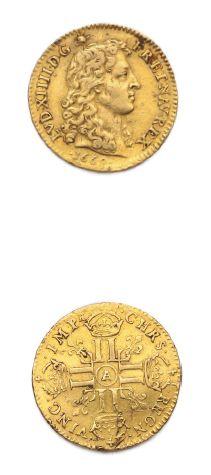 Louis d'or à la tête nue. 1669. Paris. D....