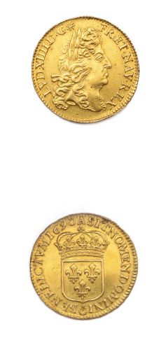 Louis d'or à l'écu. 1690. Paris. Réf. D....