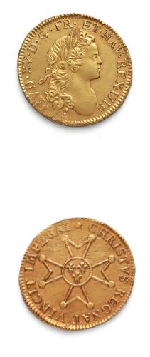 Louis d'or à la croix du Saint-Esprit. 1719....