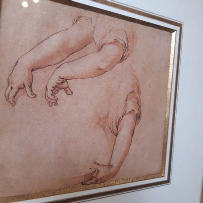 Abraham BLOEMAERT (Gorinchen 1566 - Utrecht 1651) Études de bras Plume, encre brune...