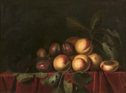 Entourage de Pierre Dupuis (1610-1682) - Nature morte aux quetsches Huile sur toile,...