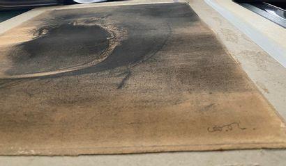 Odilon REDON (1840-1916) Visage cellulaire Dessin au fusain et à l'estompe signé...