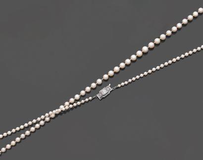 Collier de cent trente-six perles de culture...