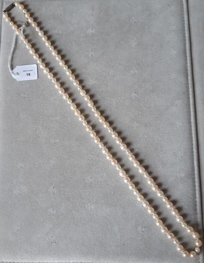 Collier de perles de culture choker. Longueur : 67 cm environ (Usures).