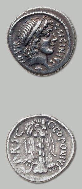 SICINIA (49 av. J.-C.) Tête d'Apollon à droite....