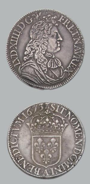 Écu à la cravate. 1673. Paris. D. 1493. Chevelure...