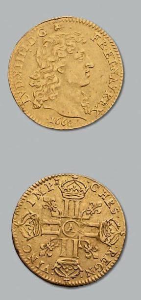 Louis d'or à la tête nue. 1668. Paris. D....