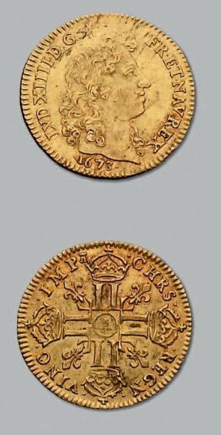 Louis d'or à la tête nue. 1673. Paris. D....