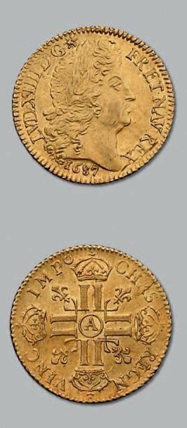Louis d'or à la perruque et aux huit L. 1687....