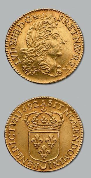 Double louis d'or à l'écu. 1692. Paris. Flan...