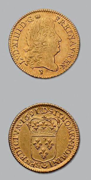 Louis d'or à l'écu. 1691. Lyon. Flan neuf....