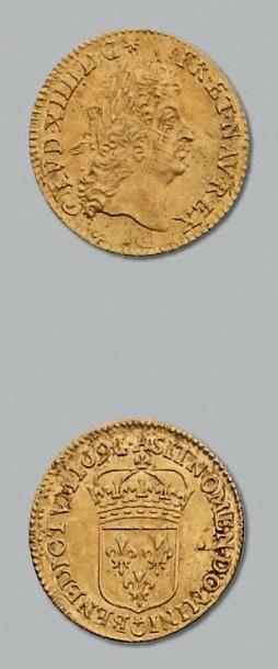 Demi louis d'or à l'écu. 1691. Paris. Réf....