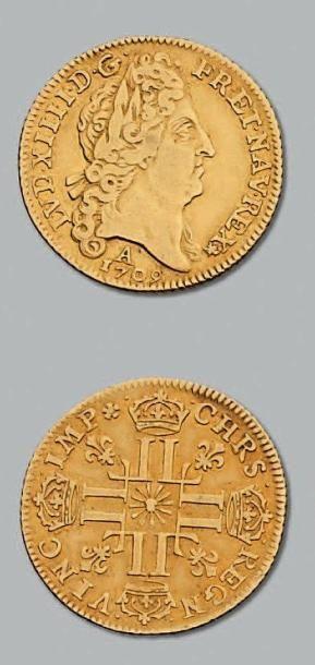 Louis d'or au soleil. 1709. Paris. D. 1449....