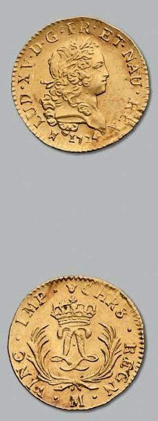 Louis d'or mirliton. Palmes longues. 1724....