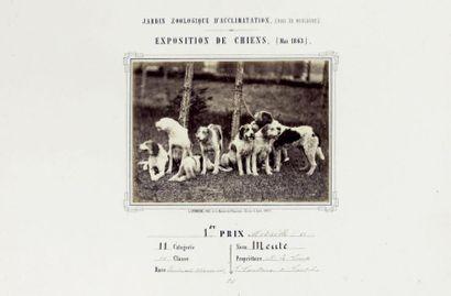 CYNOPHILIE. - CREMIÈRE (Léon). Jardin zoologique...