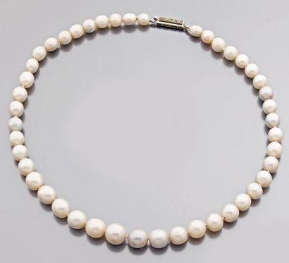 Collier de quarante-cinq perles naturelles...