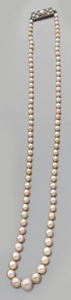 Collier de quatre-vingt-neuf perles fines...