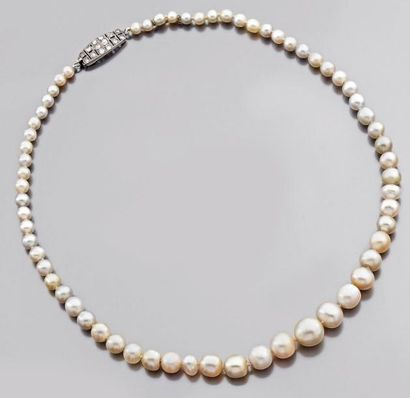 Collier de soixante-quatre perles naturelles...
