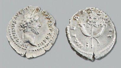 Denier (140-143) Sa tête laurée à droite....