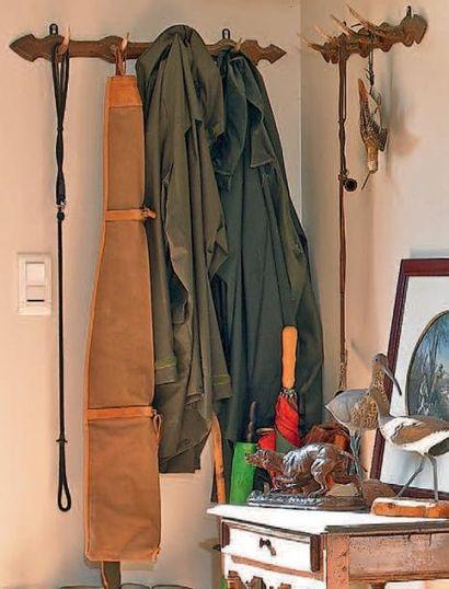 Porte-manteau perroquet en bois fruitier...