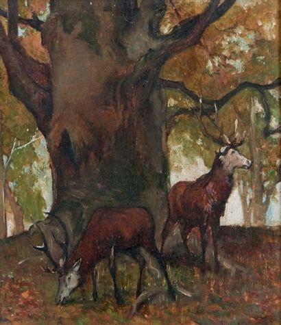 Henri DABADI (1867-1949)