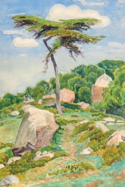 Henry de MONFREID (1879-1974)(nos 29 à 89)