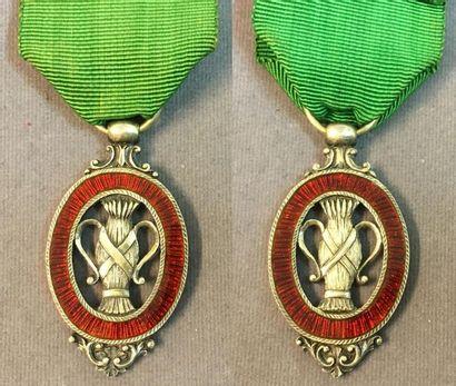 Suède - Ordre de Vasa, fondé en 1772, bijou de chevalier du premier type (avant...