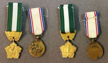 Médaille des Collectivités Locales, miniature...
