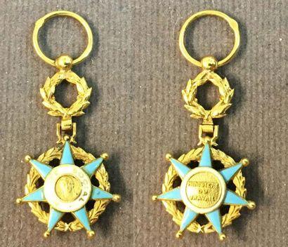 Ordre du Mérite Social, officier miniature...