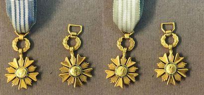 Ordre du Mérite Artisanal, deux miniatures...