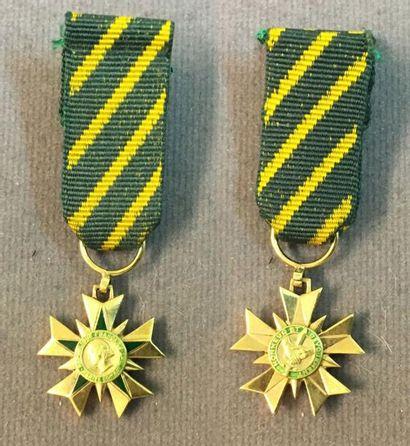 Ordre du Mérite Combattant, fondé en 1953,...