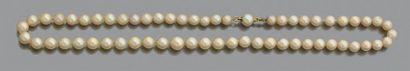 Collier de cinquante-neuf perles de culture légèrement en chute, le fermoir en or...